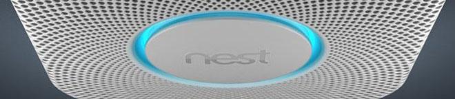 Nest-Lichtring