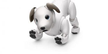 Sony Aibo Robothond